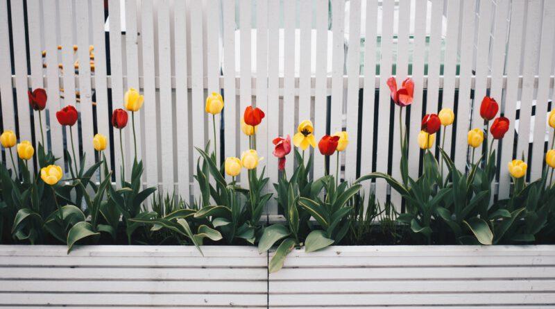 tuin update geven