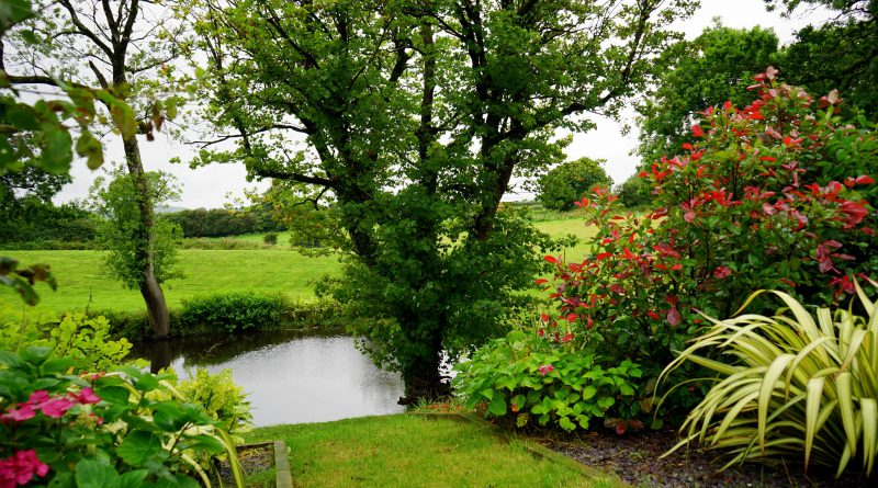 4 tips om nog meer te genieten van je tuin