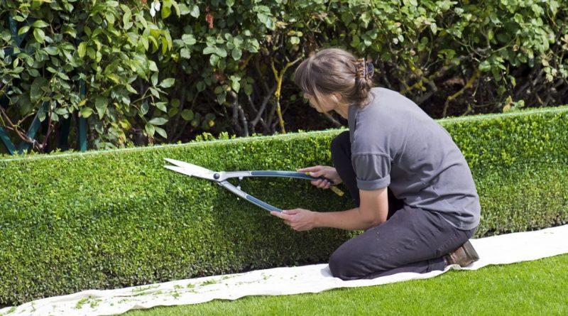 Is jouw tuin al gereed voor de zomer